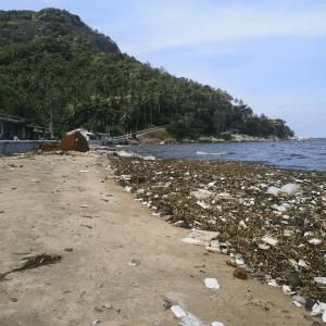 OBP Beach Hon Son Island - TONTOTON