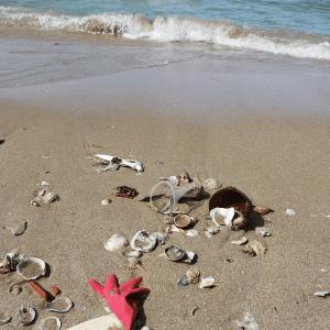 Ocean Plastic Waste - TONTOTON