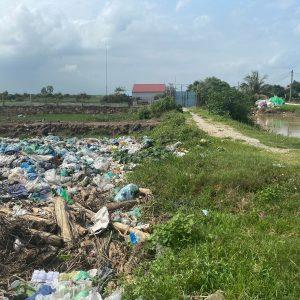 Hai Phong Plastic Litter - TONTOTON