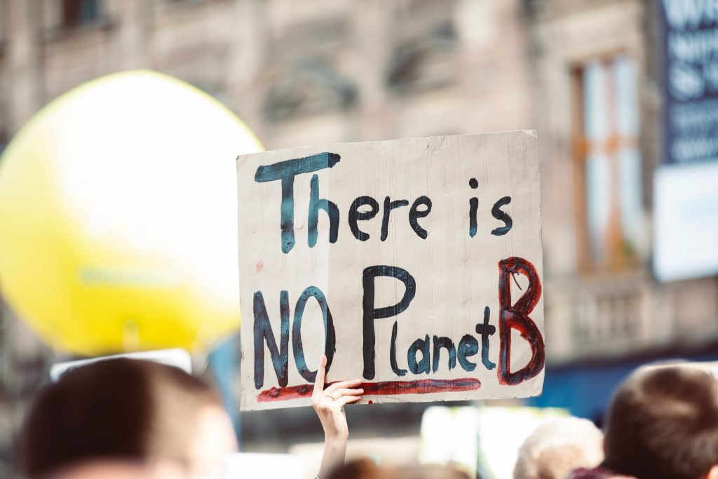 """protestor showing """"There is NO Planet B"""""""